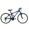 Carrefour bicilete