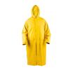 Carrefour pelerina ploaie